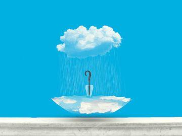 De regenwolk van Catherine Fortin