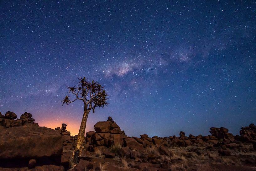 Sterrenhemel in Namibie van Jose Gieskes