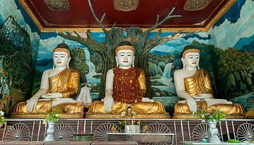Bago Township: Shwemawdaw pagode sur Maarten Verhees