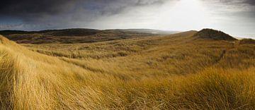 Panorama duinen Bergen aan Zee van Gerhard Niezen Photography