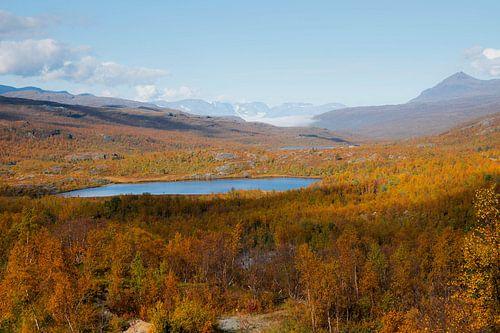 Herfstlandschap Noorwegen van