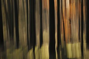 Abstracte herfst