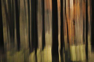 Abstracte herfst von Jan Paul Kraaij