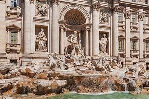 Trevi Fountain, Rome, Italy van