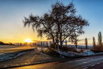Sonnenaufgang in Eyserhalte von Rob Boon
