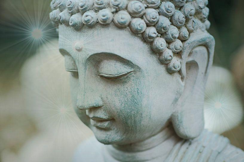 Boeddha in de tuin van Wieland Teixeira