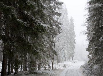 Zweeds winterbos von Arthur van Iterson