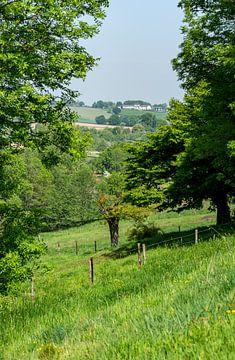 Uitzicht op het Zuid-Limburgse heuvellandschap van John Kreukniet