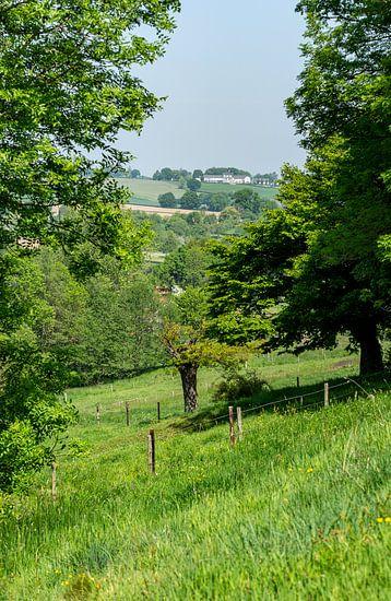 Uitzicht op het Zuid-Limburgse heuvellandschap