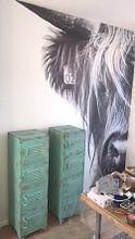 Klantfoto: Portret Schotse Hooglander zwart-wit van Sandra van Kampen, als naadloos behang
