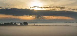 Opkomende zon in de Hoekschewaard