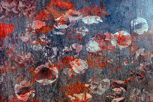 Veld met klaprozen 01 van Marijke de Leeuw - Gabriëlse
