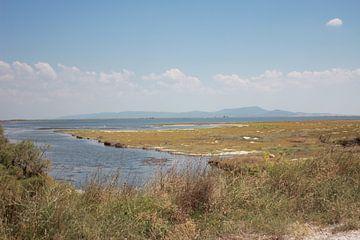 Vue de Thassos depuis le delta de l'Evros - Grèce sur ADLER & Co / Caj Kessler