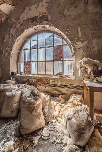 Verlaten wolfabriek van Olivier Van Cauwelaert