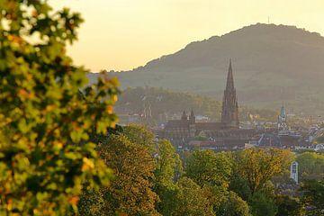 Freiburg im goldenen Oktober von