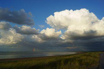 Hollandse kust van Michel van Kooten