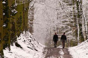 Winterwandelaars