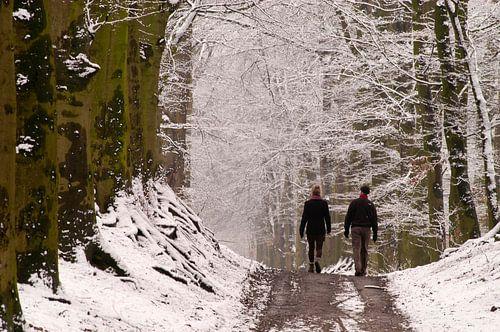 Winterwandelaars van