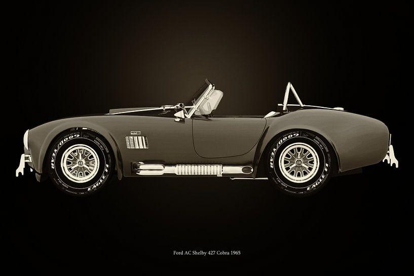 Ford AC Cobra van Jan Keteleer