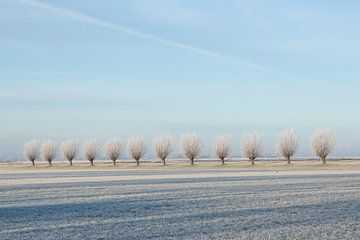 Winter landschap van Piertje Kruithof