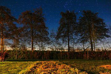 Nachtaufnahme mit blauem Himmel und vielen Sternen von Julius Koster