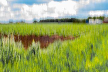 ICM foto een ander zicht op landschap van JM de Jong-Jansen