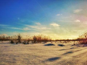 verse sneeuw van claes touber