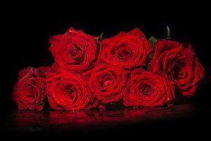 Boeket de roos van