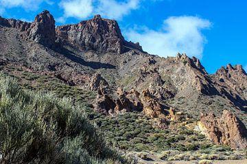 Landschaft auf Teneriffa im Teide National Park von Reiner Conrad