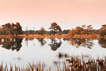 Herfst Reflecties von Marianne Rouwendal