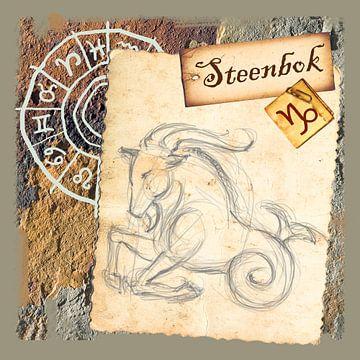 Steenbok van Studio Zes