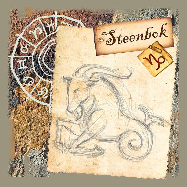 Steenbok von Studio Zes