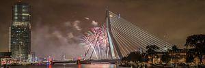 Rotterdam Erasmusbrug WHD 2015 #3