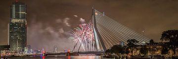 Rotterdam Erasmusbrug WHD 2015 #3 von John Ouwens