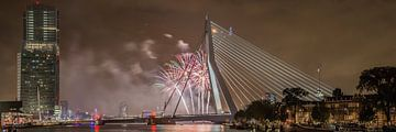 Rotterdam Erasmusbrug WHD 2015 #3 sur