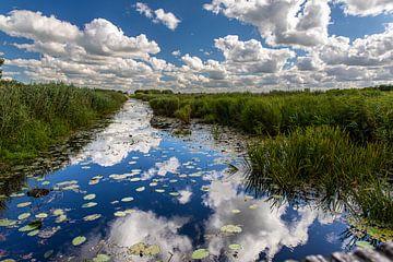 Reflexionen im Wasser von Stefan Wapstra