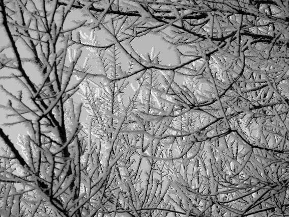 Winterwonderland van R. de Jong