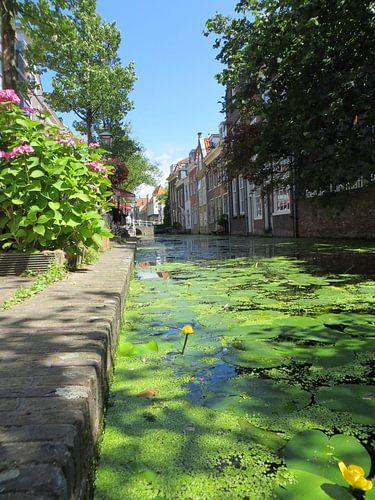 Delft gracht met oude panden in  van