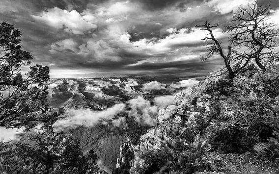 Grand Canyon van Richard Reuser