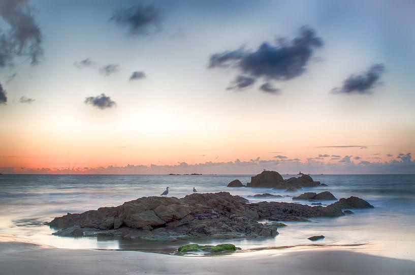 Rots in de zee van Mark Bolijn
