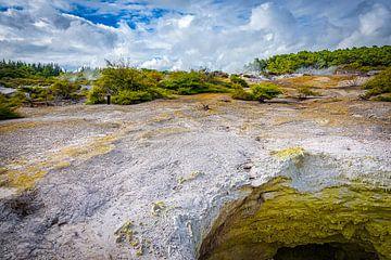Mysterieus landschap bij Rotoroa, Nieuw Zeeland van Rietje Bulthuis