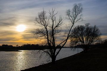 Nederrijn bij zonsondergang van Bert van Wijk