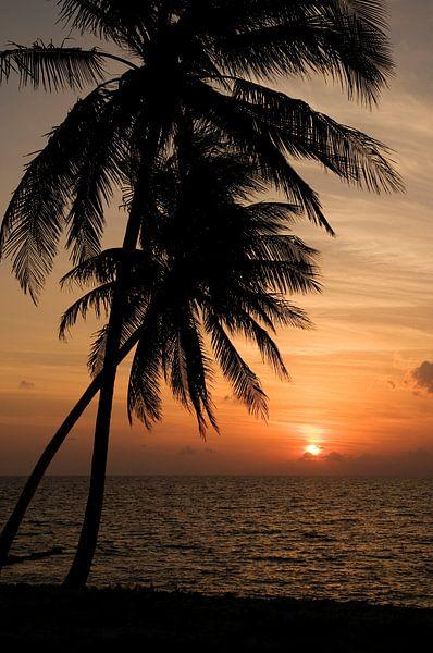 Coucher de soleil tropical sur Margot van den Berg