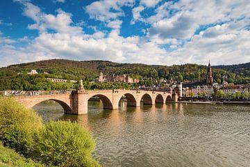 Heidelberg op de Neckar van Michael Valjak