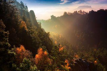 November ochtend in Saksisch Zwitserland van Daniela Beyer