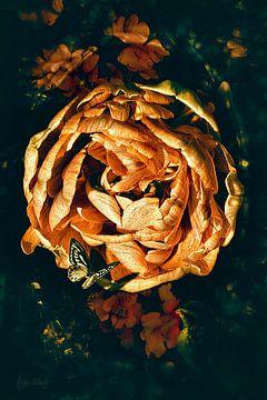 Pfingstrose Tulpe mit einem beobachtenden Vogel. von Helga Blanke