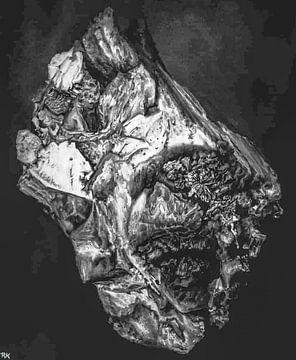 Gems steen en natuur silver van KB Prints