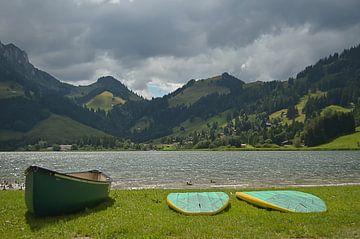 Bergsee van zwergl 0611