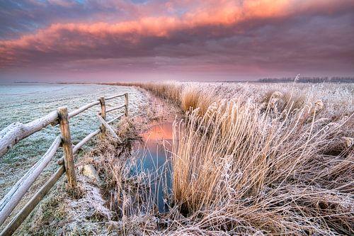 January sunrise - National Park Lauwersmeer