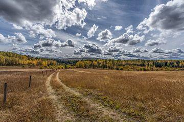 Canadees landschap von Ben Bokeh
